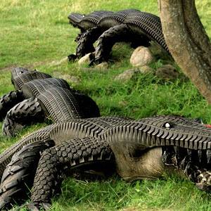 Un coccodrillo Goodyear